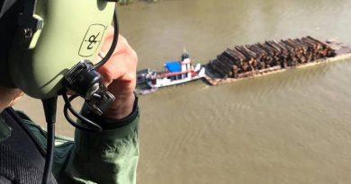 Operação em Igarapé-Miri apreende madeira ilegal e tem suspeito morto