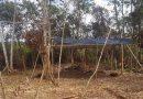 Acampamento irregular em terra indígena no Pará é desmontado