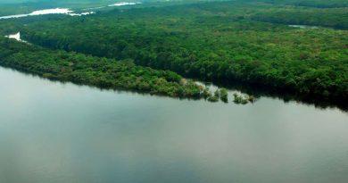 Ministério decreta situação de emergência ambiental
