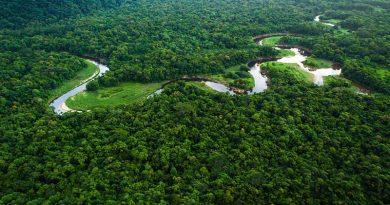 Portaria autoriza apoio da Força Nacional ao ICMBio na Amazônia