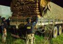 Em Altamira, PRF realiza apreensão de carga ilegal de madeira