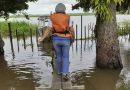 Violência doméstica: Centro Maria do Pará desenvolve alternativas para estar mais próximo das vítimas