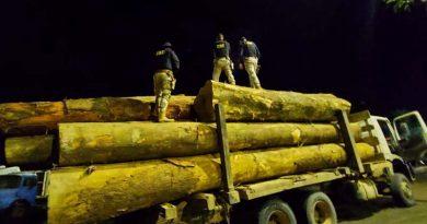 PRF apreende carga ilegal de madeira sendo transportada por motorista sem habilitação em Altamira