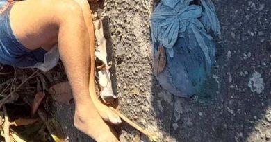 Mulher é decapitada e tem cabeça jogada longe do corpo no interior do Pará